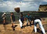 Removing sand from the digging site at Inverloch
