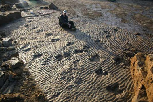 The dinosaur footprints show an excellent preservation